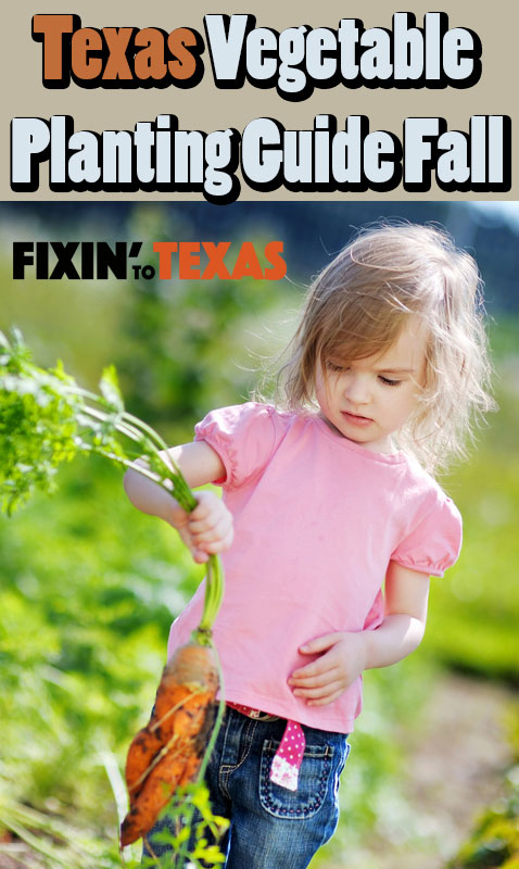 vegetable planting guide for Texas